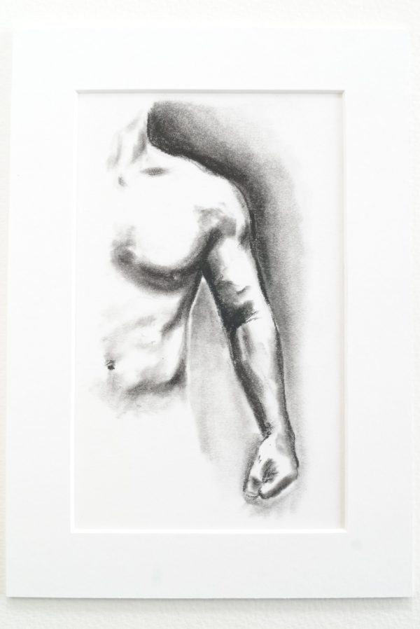 Muscle Study 6 - charcoal drawing on paper