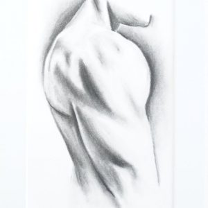 Deltoid - charcoal drawing, A4. Bodybuilder art | bodybuilder drawing